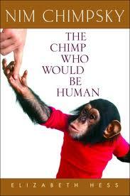 Nim_the_Chimp