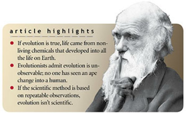 is evolution a lie highlights