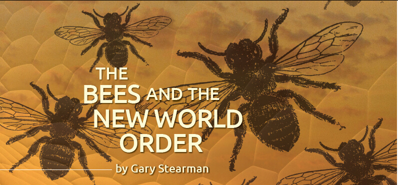 bees new world order